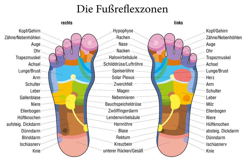 Grafik von Fußsohlen mit farbig dargestellten Reflexzonen